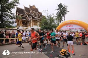 LP-Half Marathon4